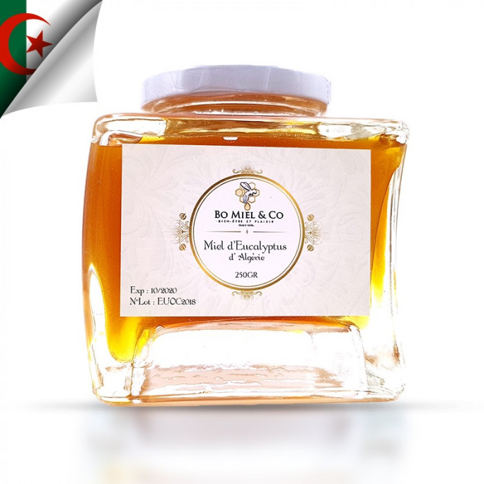Eucalyptus honey from Morocco