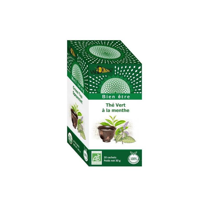Grüner Tee mit Bio-Minze
