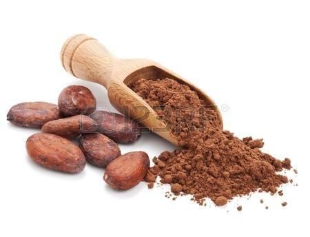 Cacao orgánico puro sin grasa (sin azúcar)