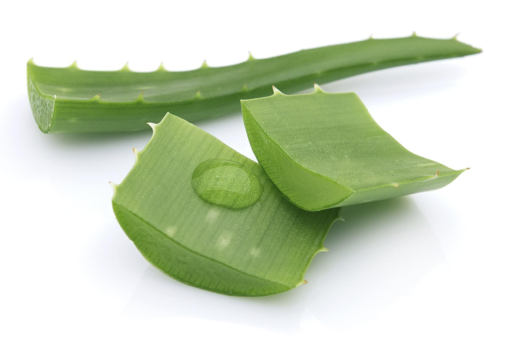 Gélules d'Aloe vera