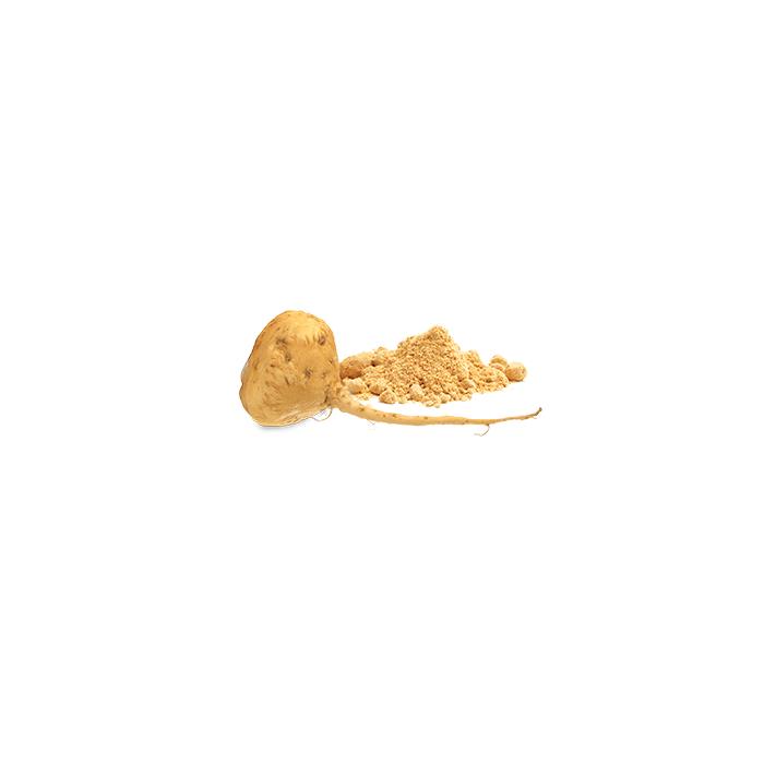 Gélule poudre de racine de Maca Bio