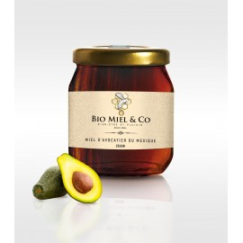 Miel d'Avocatier (Mexique)
