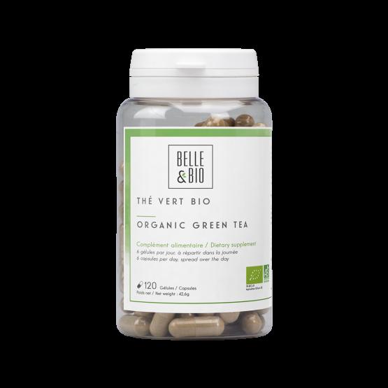 Organic certified green tea Ecocert (capsules)